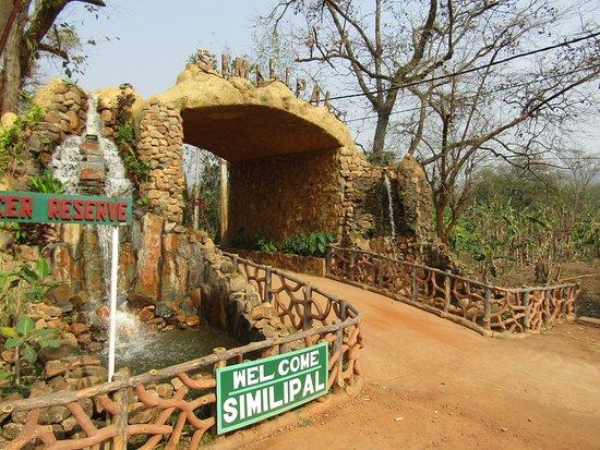 simlipal-national-park